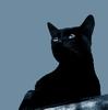 Гелеобразователь  LECIGEL™ File.php?avatar=119_1422361026